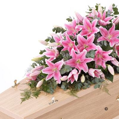 Lily Casket Spray   White